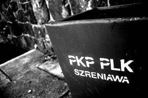 Stacja PKP Szreniawa