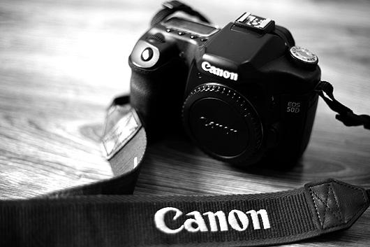 Canon EOS 50D 1