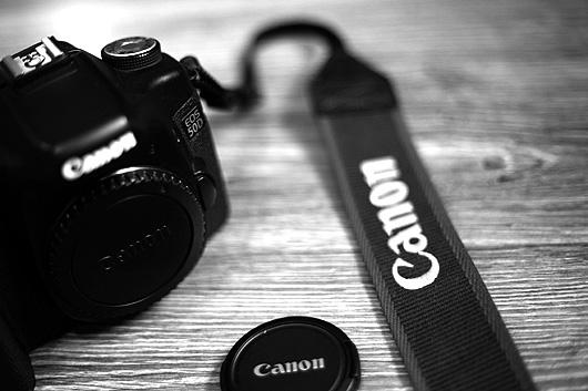 Canon EOS 50D 3